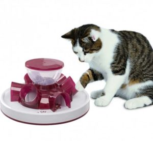 Cat-Activity-katten-Voerspel-tunnel-feeder-1-min-paars
