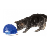 eten-spelen-kat