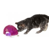 eten-spelen-kat-paars