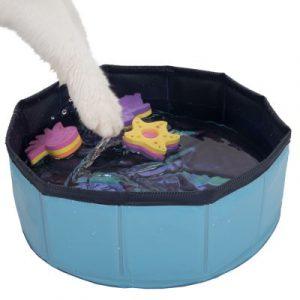 katten-zwembadje