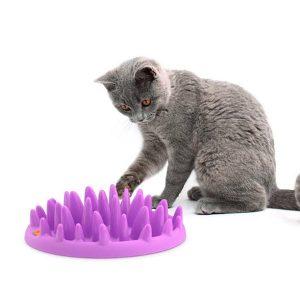 voerspel-stekels-kat