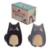 peper-en-zout-stel-katten-feline-fine-gift-box