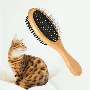 borstel-kat-lang-kort-haar-hout1
