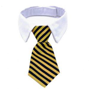 Katten-stropdas-geel