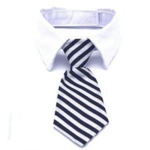 Katten-stropdas-wit