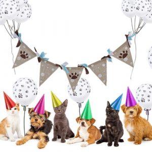 feest-vlaggetjes-katten-pootjes-1