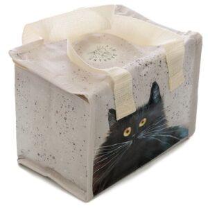 Katten koeltas kim hastins