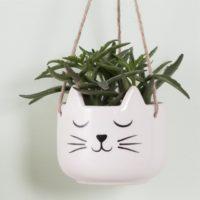 katten-planten-potje-2-s