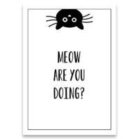 kaartje-meow-are-you-doing