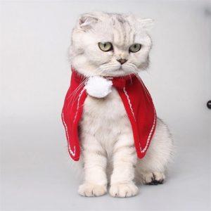 Katten-kerst-pakje-kerst-cape