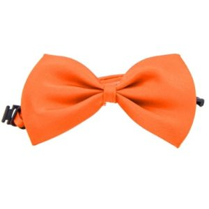 strikje-katten-halsbandje-oranje