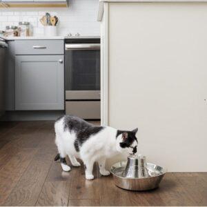 Katten Drinkfontein Roestvrij staal 4