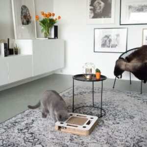 Katten Speeldoos Spy wit 1