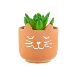 katten plantenpotje terra cotta