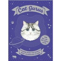 Cat Gurus game