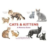 Cats & kittens memory game
