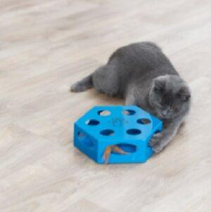 Katten speeldoos met veer