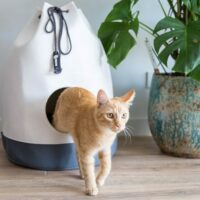 kattenhuis casa distrikt 70 wit antraciet
